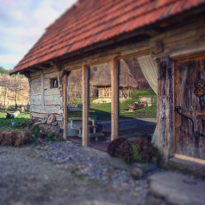 Vacante de vis in Romania - Sura lui Victor