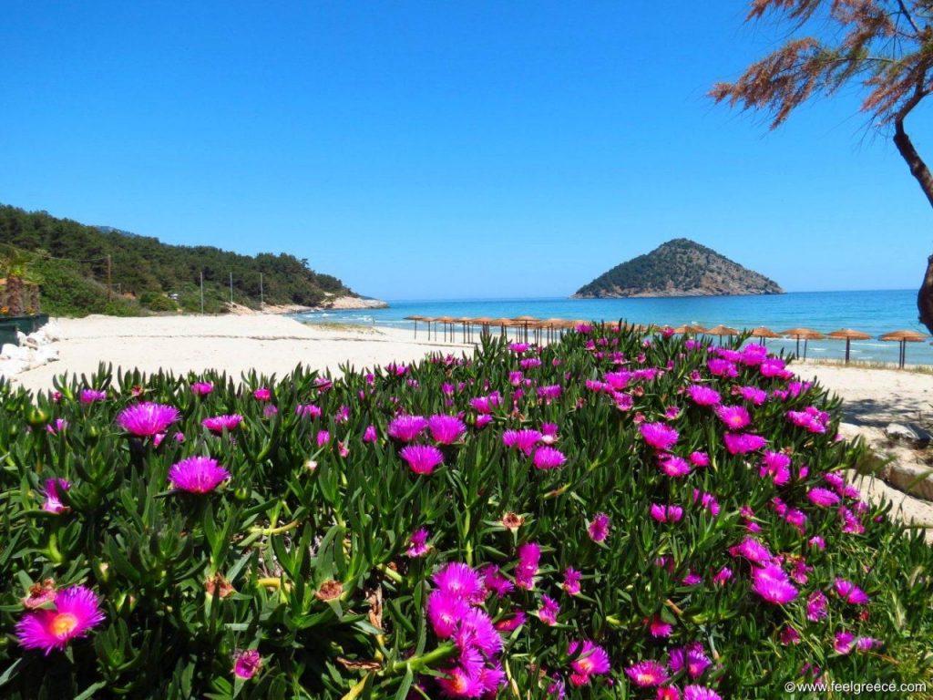 Cea mai frumoasa plaja din Thassos - Paradise Beach